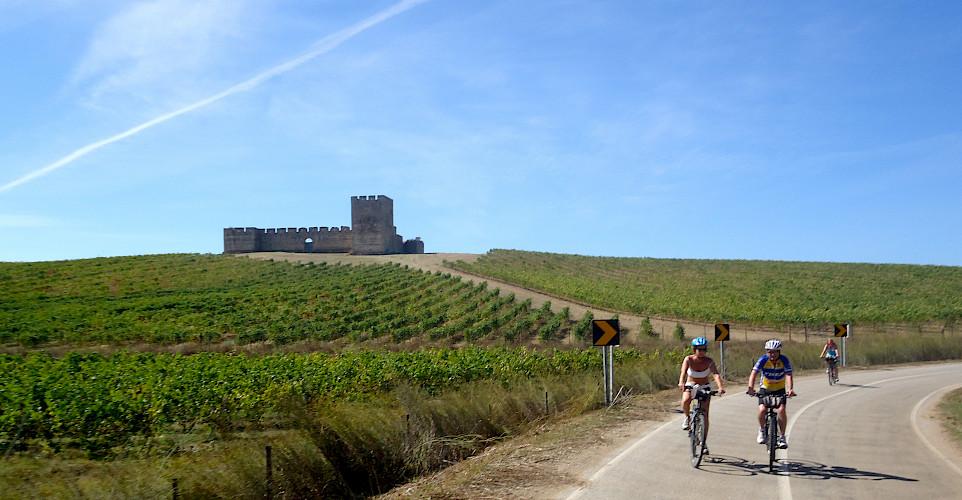 Biking past vineyards, and castles on this tour. Photo courtesy of Tour Operator.