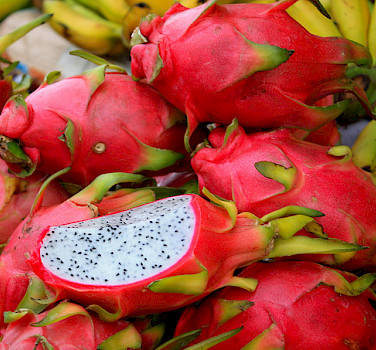 Cambodian locals love dragonfruit. Photo via Flickr:christine zenino