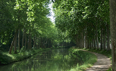 Tow path along the Canal du Midi in France. Flickr:Andy Wright