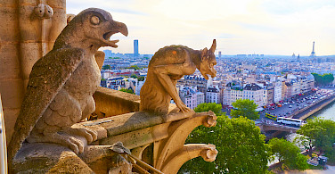 Gargoyles on Notre Dame Cathedral, Paris, France. Photo via Flickr:Moyan Brenn