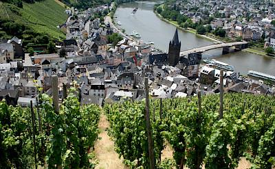 Vineyards by Bernkastel-Kues, the Mosel River Valley. Flickr:Megan Mallen