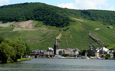 Bernkastel-Kues in the Mosel River Valley. Flickr:Megan Cole