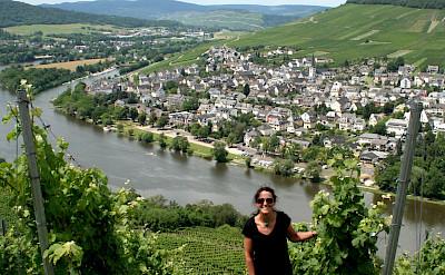 Vineyards by Bernkastel-Kues, the Mosel River Valley. Flickr:Megan Cole