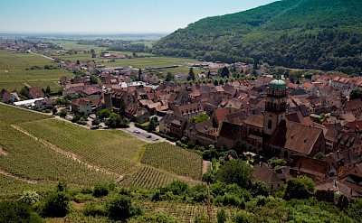 Vine-covered hills surround Kaysersberg, Alsace, France. Flickr:Allan Harris