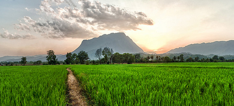 Biking past mountains and fields in Chiang Dao, Thailand. Photo via Flickr: fulloftravel