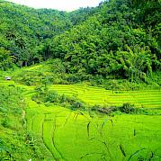 Northern Thailand Photo