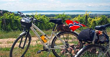 Lake Balaton Bike Tour in Hungary.