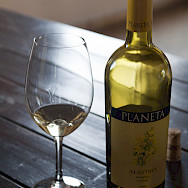 Planeta Wine in Sicily, Italy. Flickr:Anna & Michael