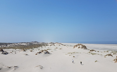 Dunes on Terschelling Island in North Holland. ©TO