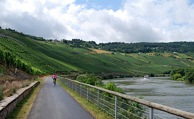 Biking along the Mosel River in Germany. ©TO
