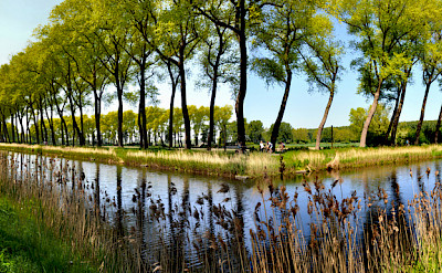 Scenic bike paths in Damme, West Flanders, Belgium. Photo via Flickr:thsd90