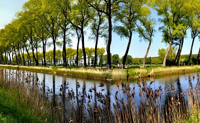 Bike paths in Damme, West Flanders, Belgium. Flickr:THS D90