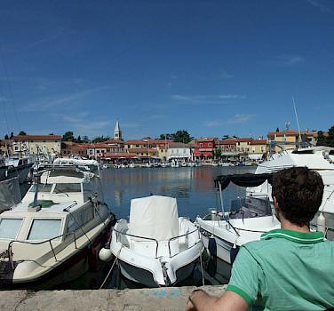 Harbor in Novigrad. Photo via Flickr:Matthew Metcalfe