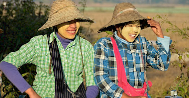 Farming girls on the road leaving Nyaungshwe, Burma. Photo by Tim Manning