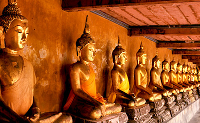 Buddha statues in Wat Mahathat, Bangkok, Thailand. Photo via Flickr:telmo32