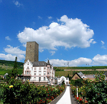 Beautiful countryside of castles and vineyards near Rudesheim, Germany. Photo via Flickr:Chico