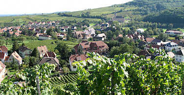 Vine-covered hills in Andlau, Alsace, France. Photo via Flickr:Francois Schnell