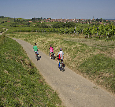 Along quiet roads on this bike tour of Alsace, France. Photo via Flickr with permission from Espace Randonnee