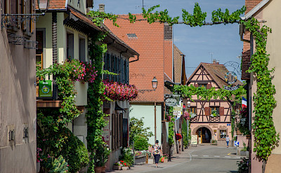 Biking around Alsace, France. Flickr:Valentin R.