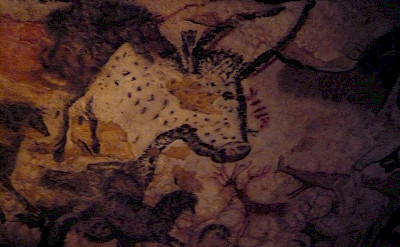 Lascaux cave paintings. Flickr:Christine McIntosh