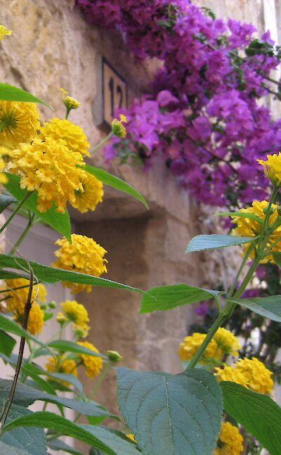 Sant Martí d'Empúries, Catalonia, Spain. Flickr:Kevin Krejci