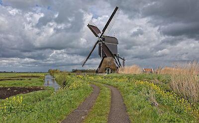 Biking through polderlands. ©Hollandfotograaf