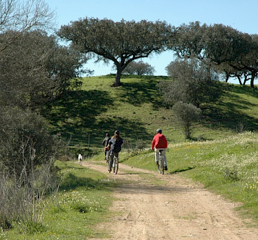 Biking the Alentejo region in Portugal. Photo courtesy of TO