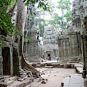 Temple of Ta Prohm made famous by Tomb Raider in Cambodia. Photo via Flickr:Photo Dharma