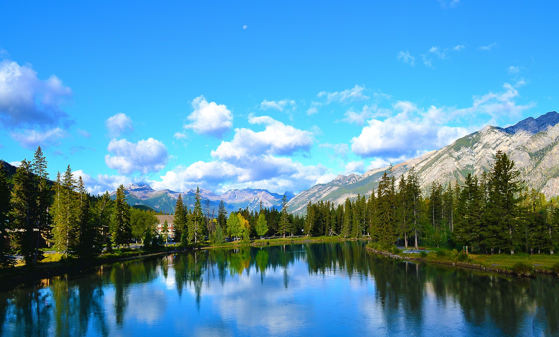 Bicycle Blue Book Value >> Jasper to Banff Bike Tour - Canada | Tripsite