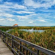 Khao Sam Roi Yot National Park in Prachuap Khiri Khan, Thailand. Photo via Flickr:Thanate Tan