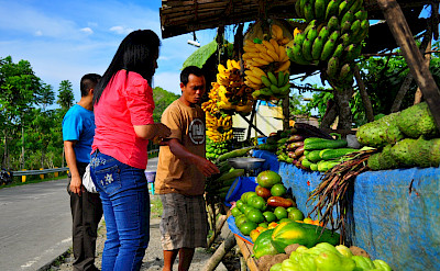Roadside fruit stand to refresh your bike tour. Cebu City, Cebu Island Province, the Philippines. Flickr:whologwhy