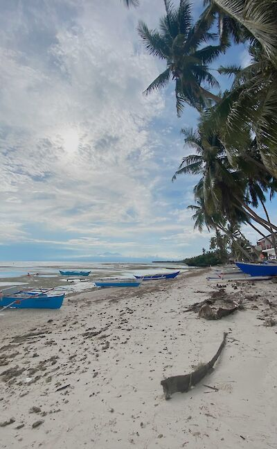 Siquijor, Philippines. Photo by TripSite's Laverne