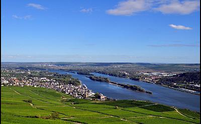 Bike & Boat along the Rhine River towards Rudesheim. Photo via Flickr:Steve Walker