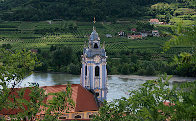 Durnstein within the vineyards of the Wachau wine region, Austria. Flickr:jay8085