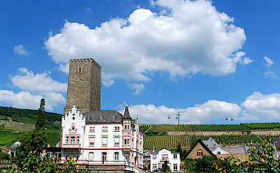 Rudesheim is famous for its beauty throughout Germany. Flickr:Chico