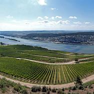 Rüdesheim and its many vineyards. Flickr:Philipp Gerbig