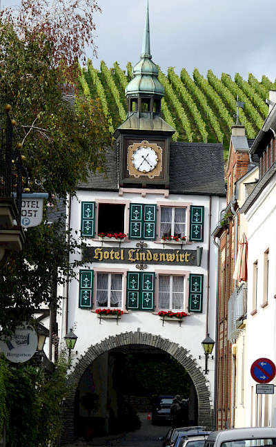 Rudesheim's great architecture and vineyards along the Rhine River, Germany. Flickr:michael clarke stuff