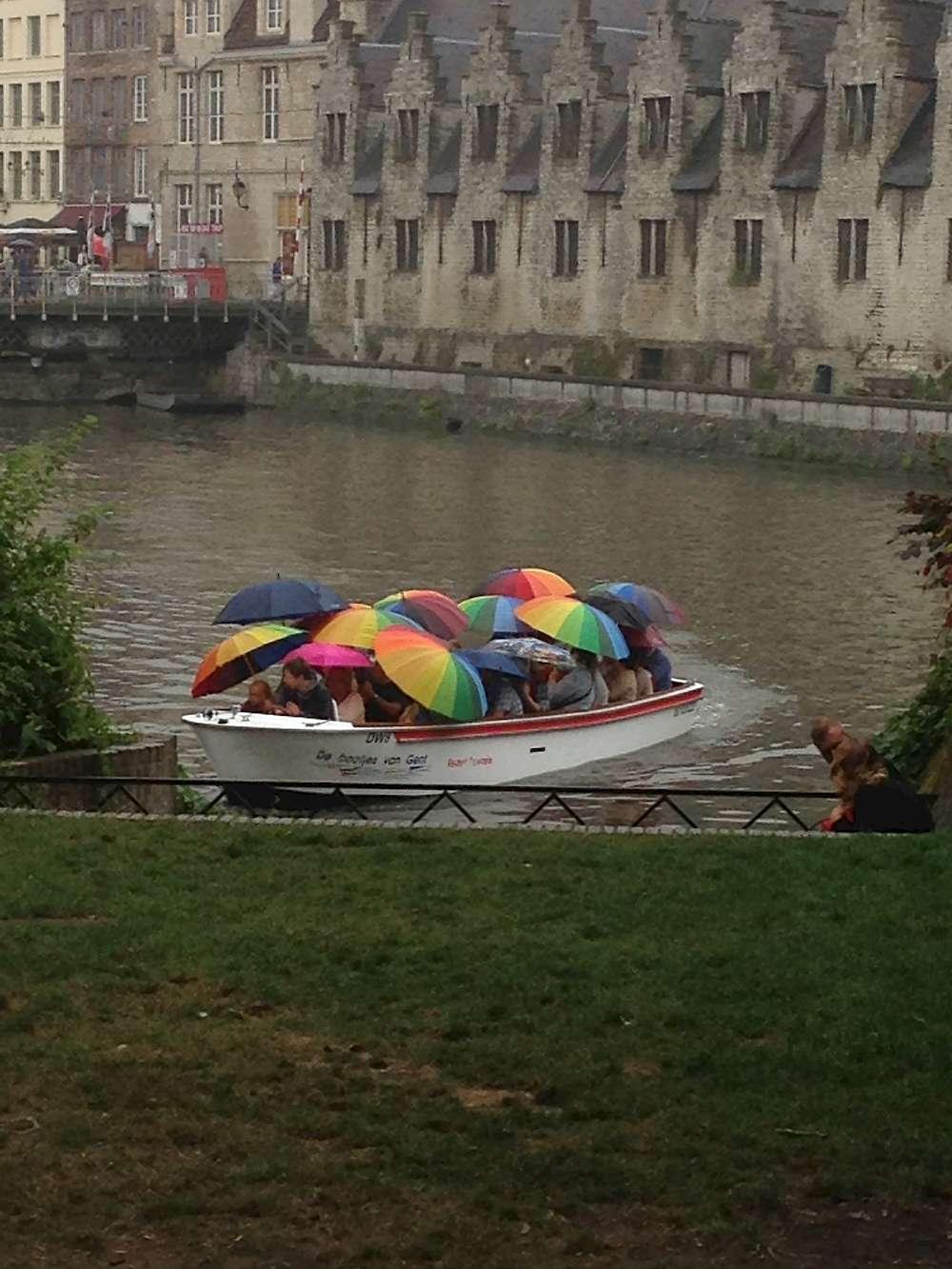 Splash of color on a rainy day, Netherlands