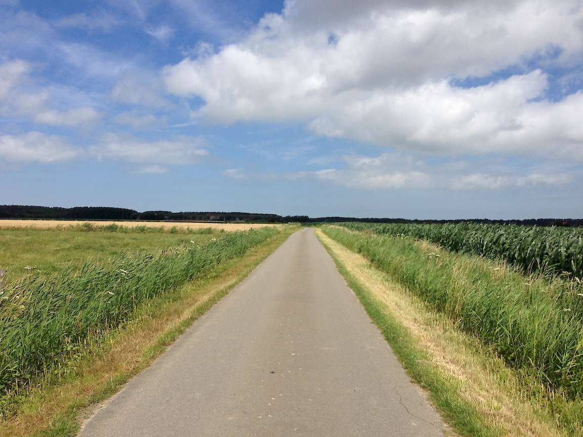 Cycle path Netherlands