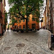Alleyways in Gamla Stan, Old Town in Stockholm, Sweden. Photo via Flickr:Miguel Virkkunen Carvalho