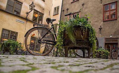 Old Town architecture in Stockholm, Sweden. Flickr:Tony Webster
