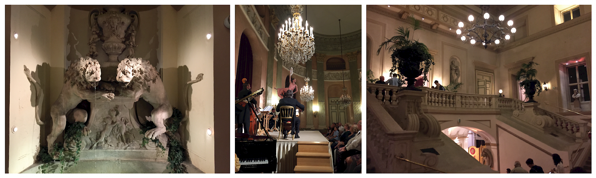 Classic Waltz and Operetta Concert at the Viennese Palais