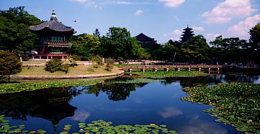 Gorgeous temple in Seoul, South Korea. Photo via Flickr:Ekke