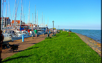 Volendam with its many old boats on Marker Meer in Holland. Flickr:Jose A.