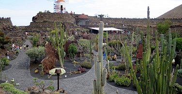 Jardin de Cactus (Cactus Garden) designed by Cesar Manique on Lanzarote, Canary Islands. Photo via Flickr:Ben Salter