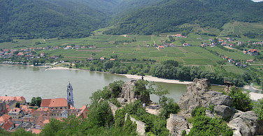 View from Durnstein Castle showing the many vineyards along the Danube River in the Wachau Valley. Photo via Flickr:muppetspanker