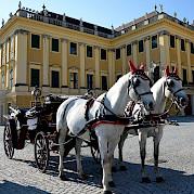 A través del Danubio - Passau, Bratislava, y Viena Foto