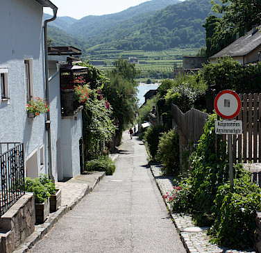 Along the Danube in the Wachau Valley (a UNESCO site) between Melk and Krems. Photo via Flickr:gmourits