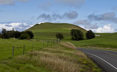 Kohala Mountain Road, Hawaii. Photo via Flickr:Andrew K. Smith