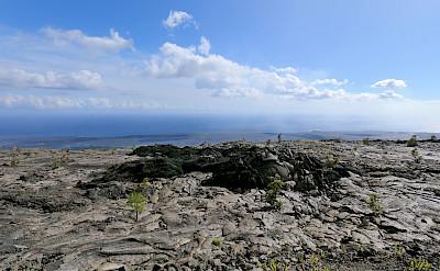 Mauna Ulu lava flow at Volcanoes National Park, Hawaii. Photo via Flickr:Robert Linsdell